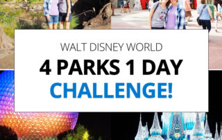 Walt Disney World 4 Parks 1 Day Challenge