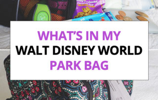 What's In My Walt Disney World Park Bag