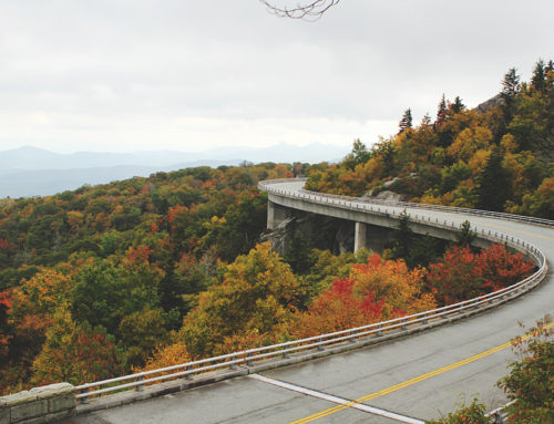 RALEIGH DAY TRIPS / Hiking to Rough Ridge and the Linn Cove Viaduct