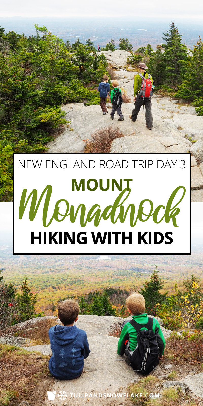 Mount Monadnock hiking with kids