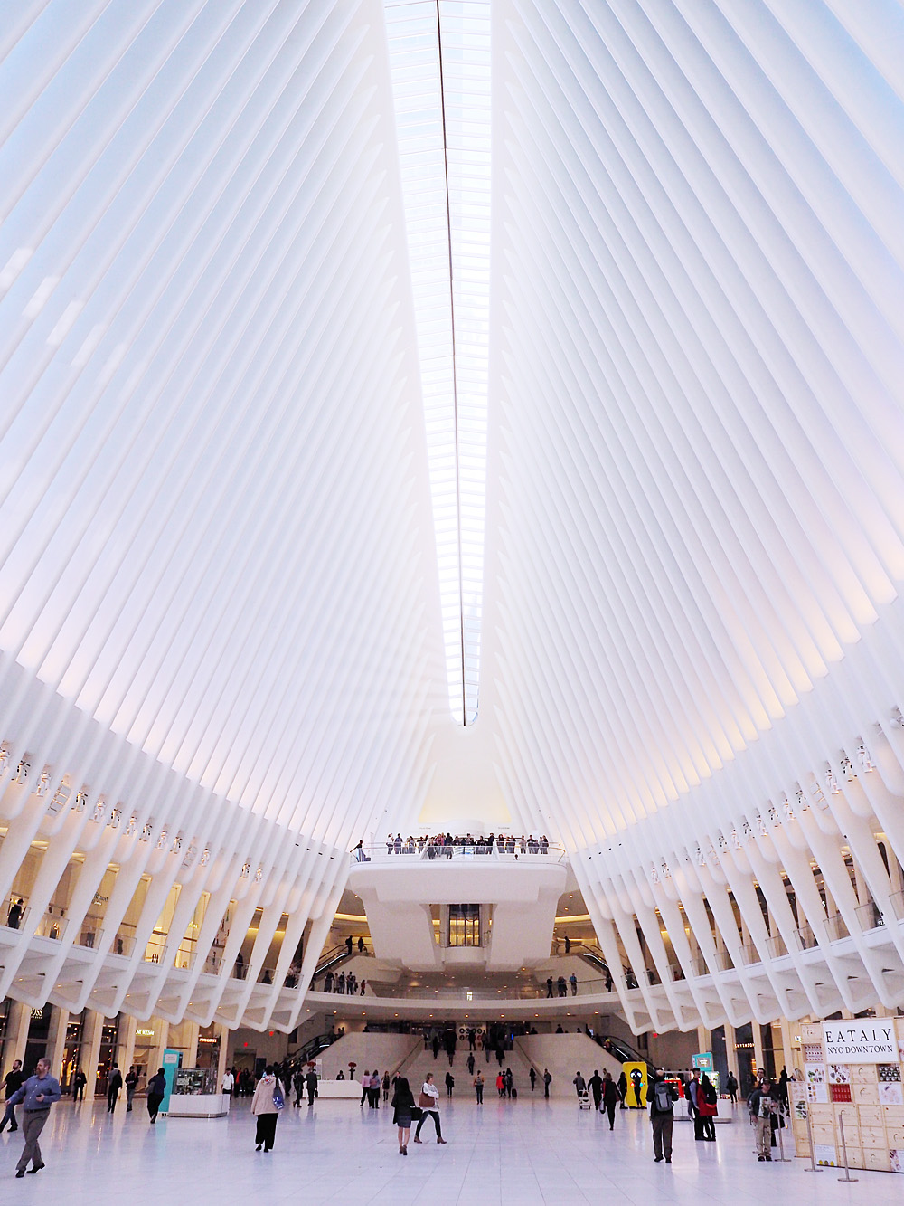 Oculus New York City