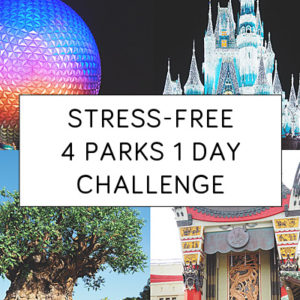 Stress-Free Disney World Four Parks Challenge