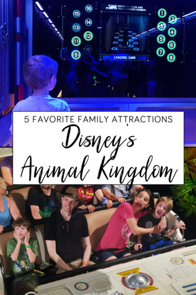 Family Attractions at Disney's Animal Kingdom