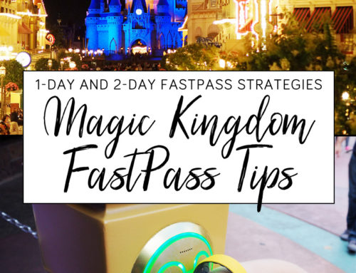 Disney's Magic Kingdom FastPass Advice and Itinerary