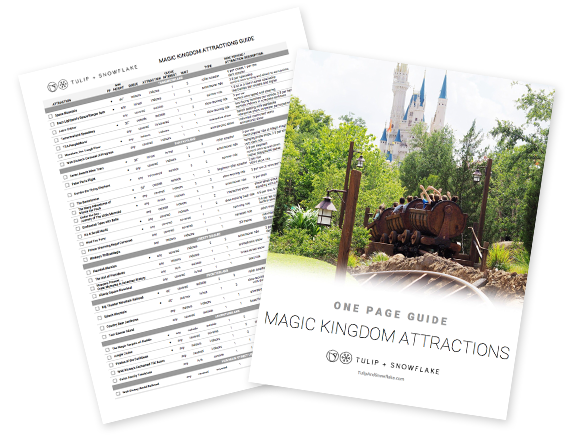 Disney World Magic Kingdom attractions guide