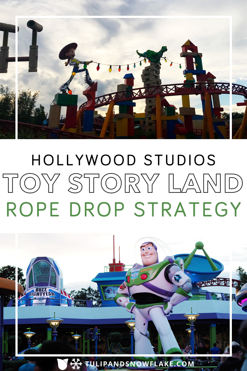 Hollywood Studios Rope Drop