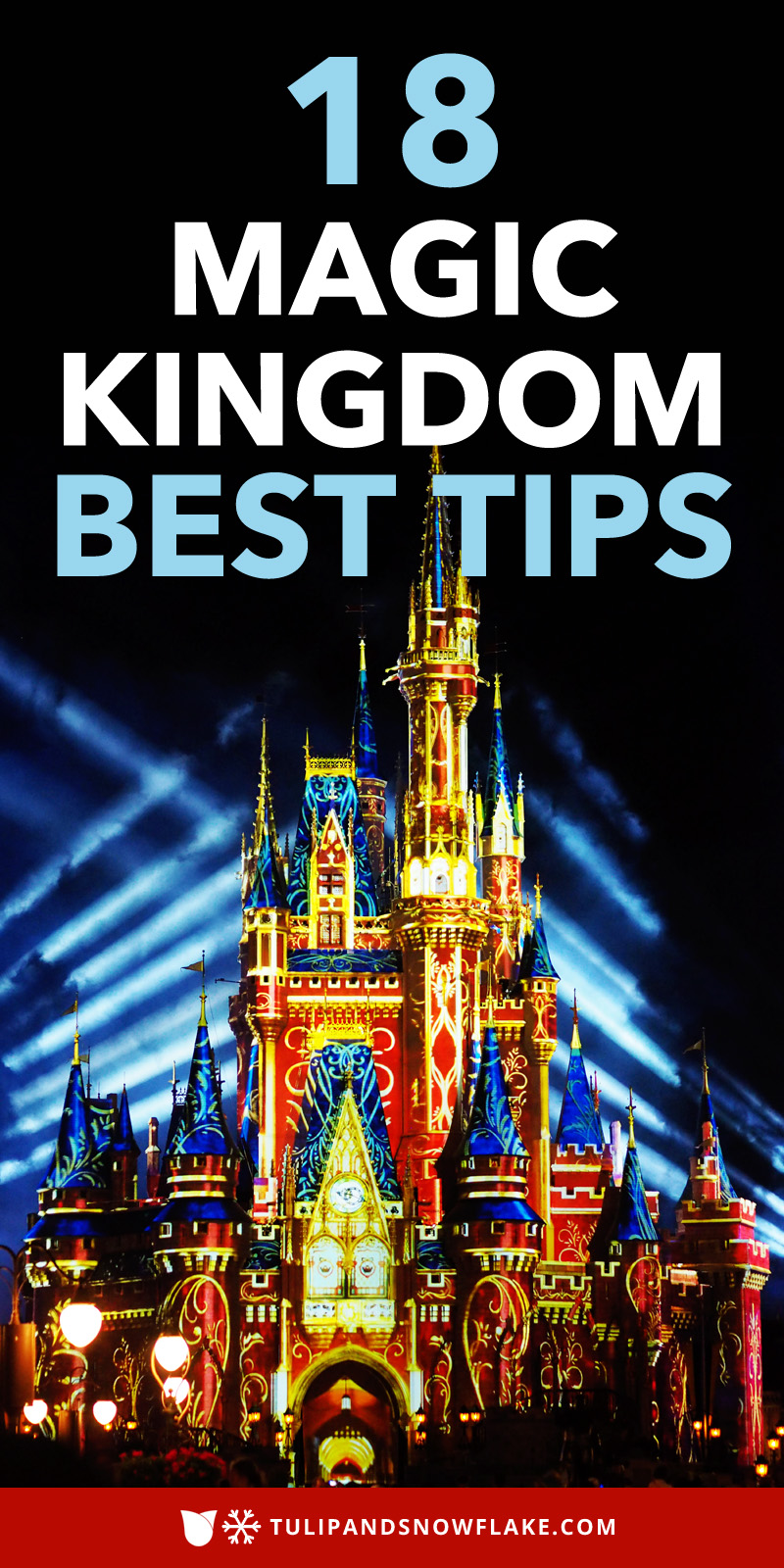 18 Magic Kingdom Best Tips