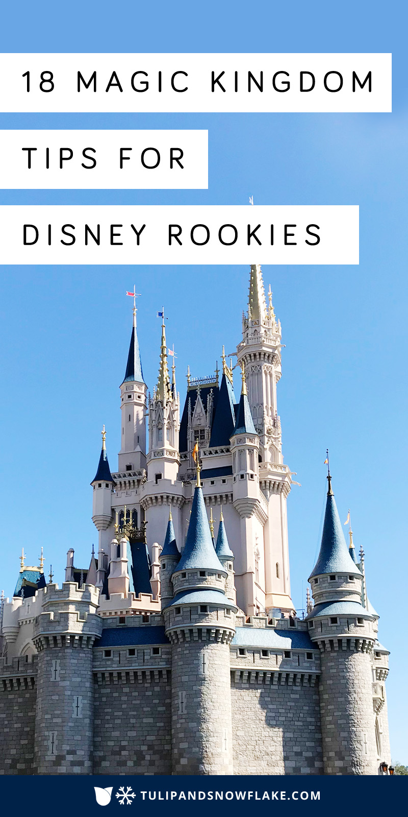 18 Magic Kingdom Tips for Disney Rookies
