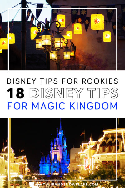 Disney World Magic Kingdom Tips for Rookies