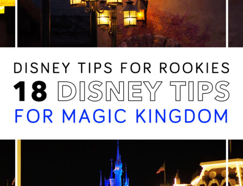 18 Magic Kingdom Tips for Families