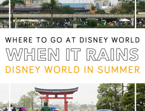 Where To Go When It Rains at Disney World