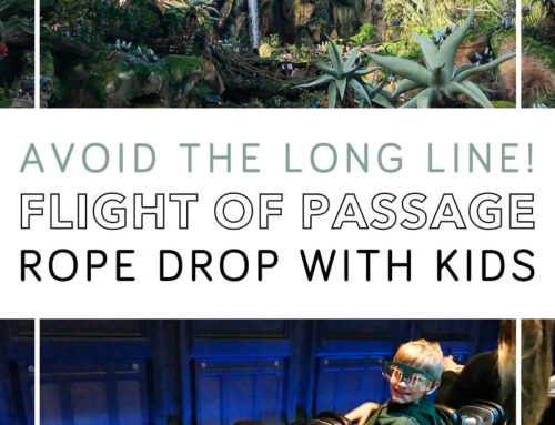 Flight of Passage Rope Drop With Kids