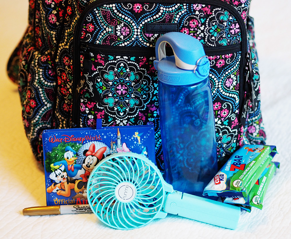 What's In My Walt Disney Park Bag
