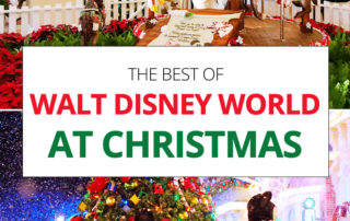 Walt Disney World at Christmas