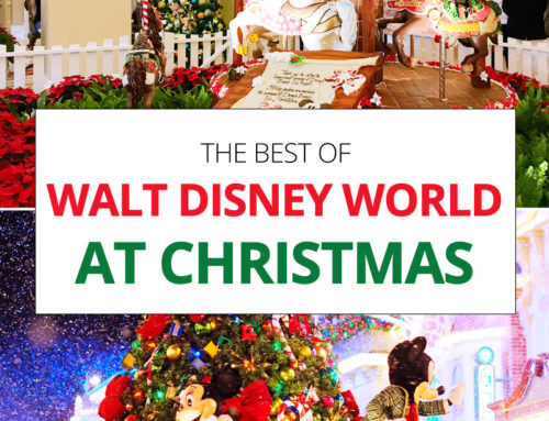 The Best of Walt Disney World at Christmas