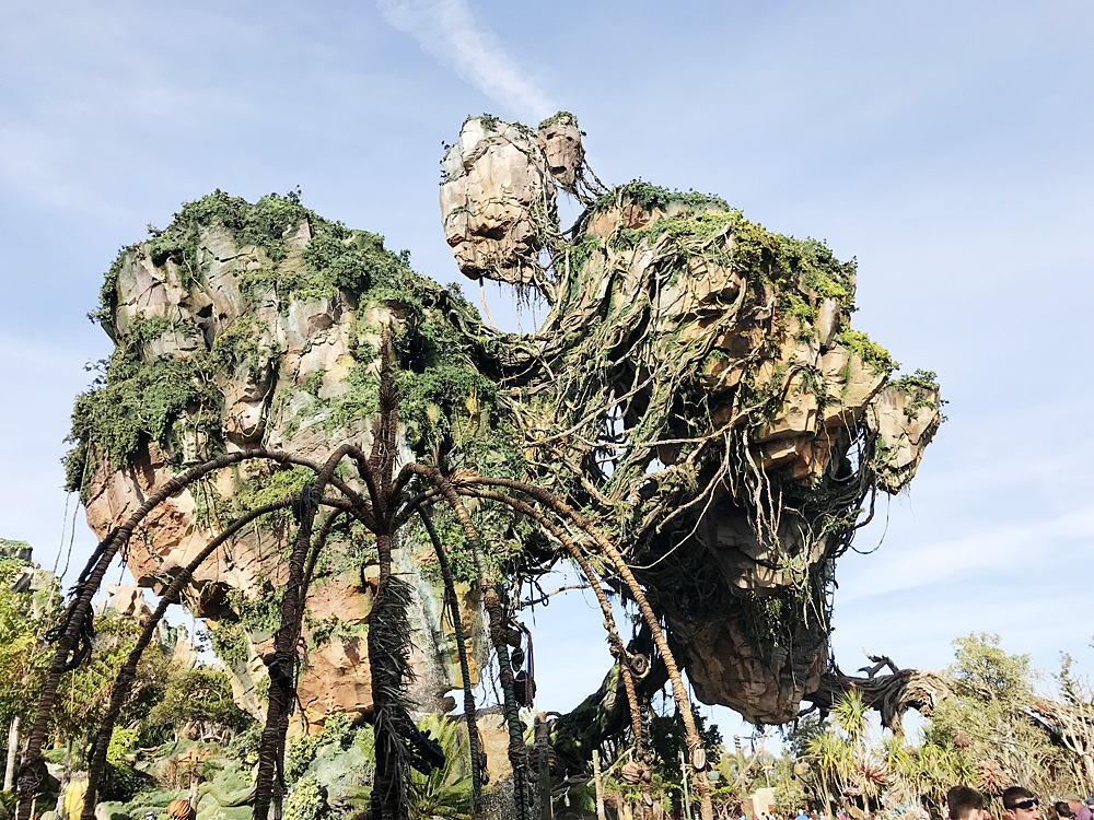 Disney Flight of Passage in Pandora