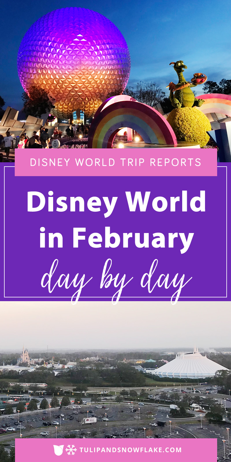Disney World in February trip reports