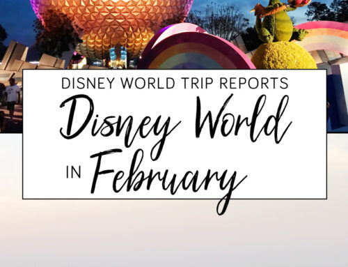 Disney World in February trip Report