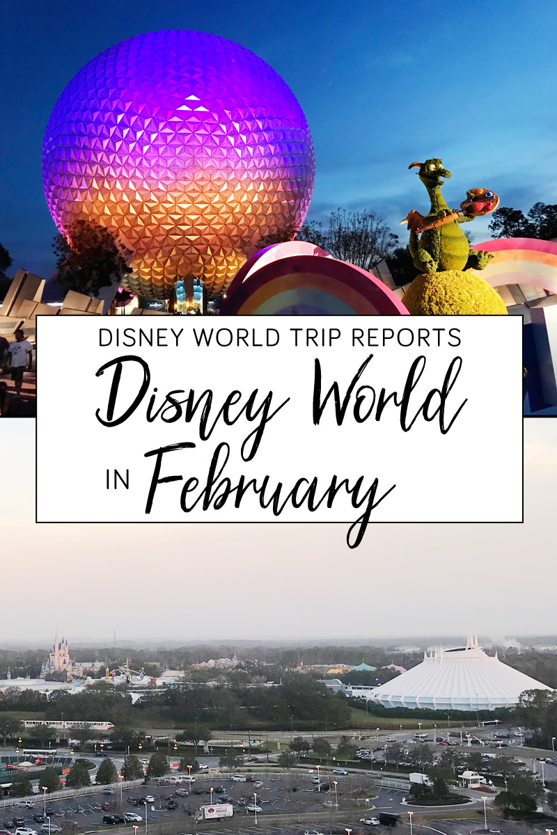 Disney World Trip in February