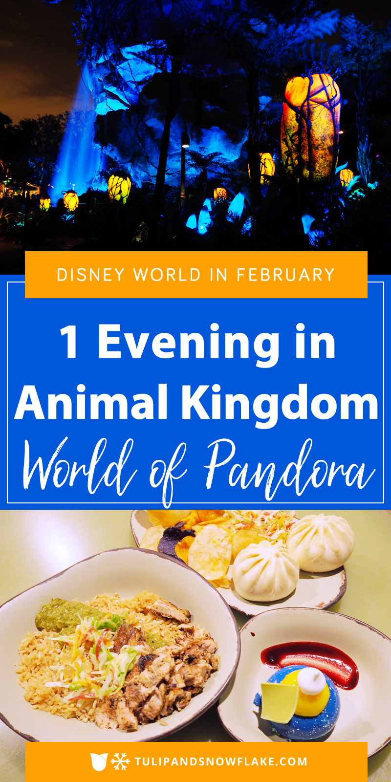 1 Evening in Animal Kingdom World of Pandora