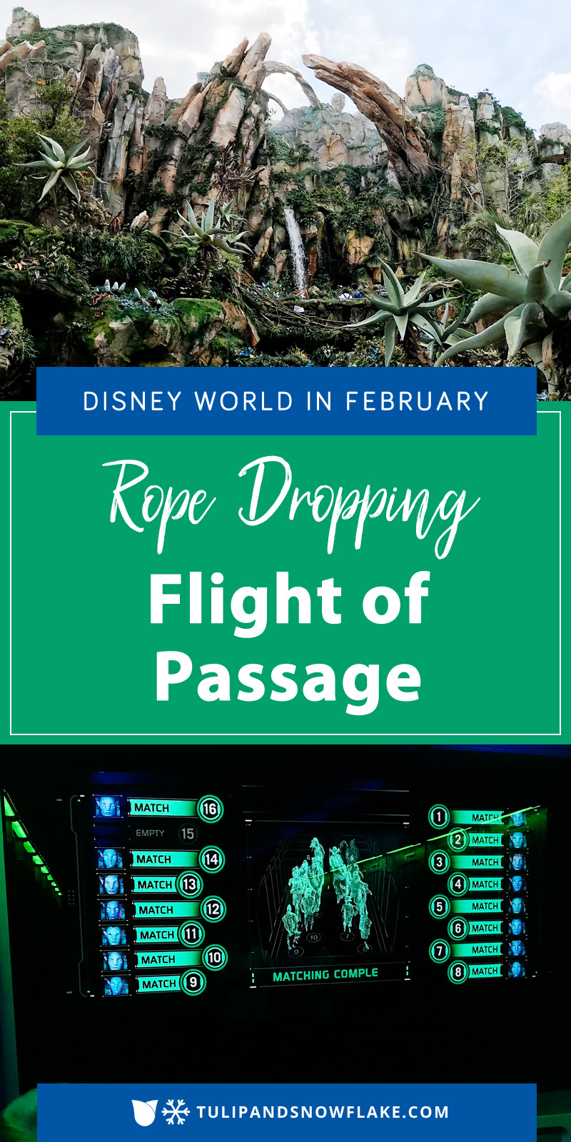 Rope Dropping Flight of Passage