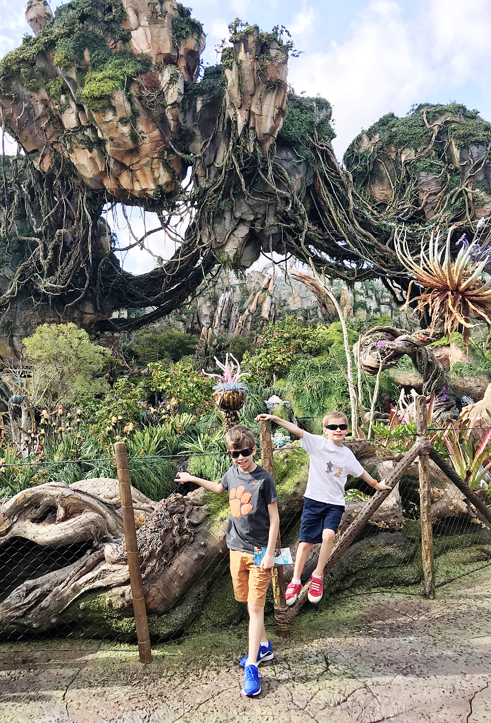 Disney's Animal Kingdom World of Pandora
