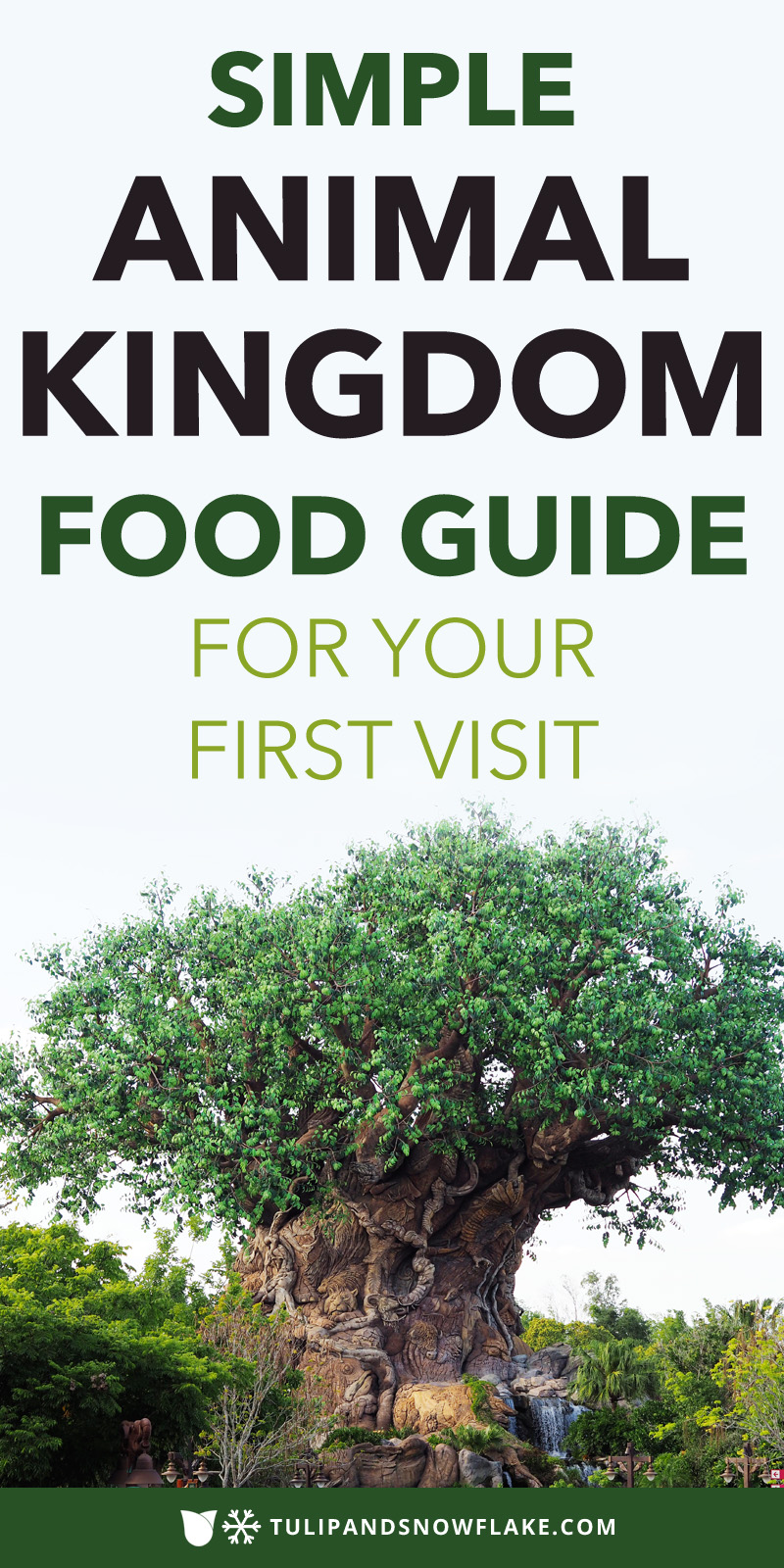 Animal Kingdom Food Guide