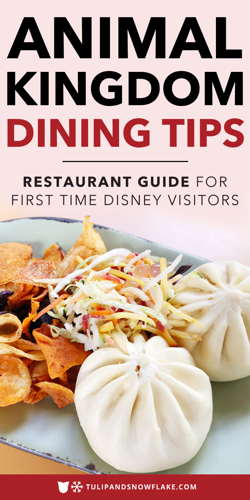 Animal Kingdom Dining Tips
