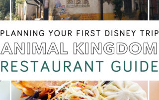 Disney World Animal Kingdom Restaurant Guide