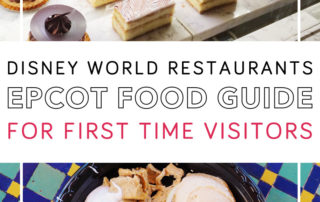 Epcot Food Guide for First Time Visitors