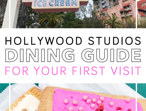 Guide to Disney Hollywood Studios Food and Restaurants