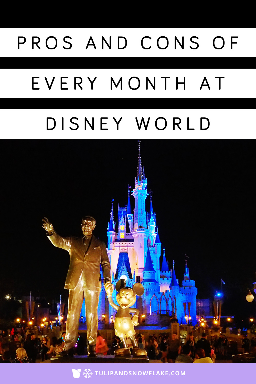Pros and cons of every month at Disney World