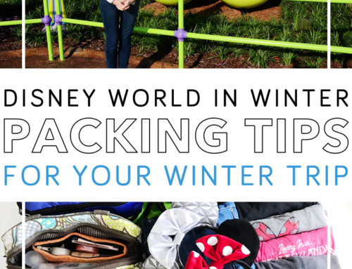 Disney Packing List for Winter