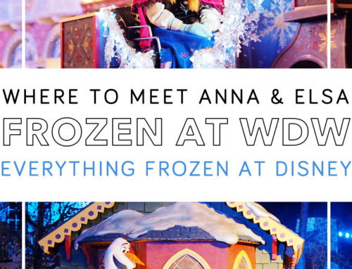 Everything Frozen at Disney World