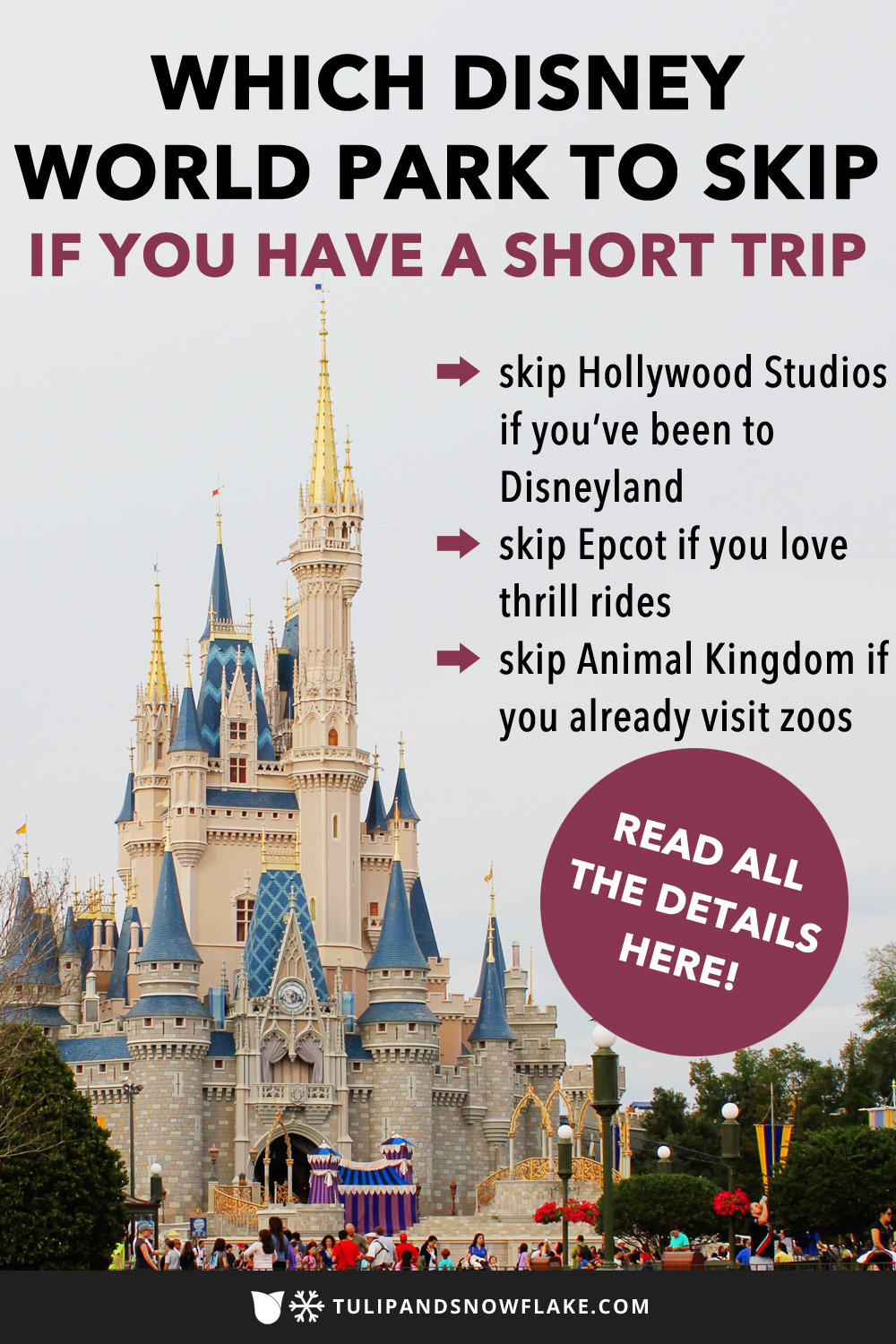 Which Disney World park to skip if you have a short trip
