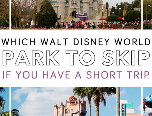 Which Disney Park to Skip If You Only Have 2 Or 3 Days