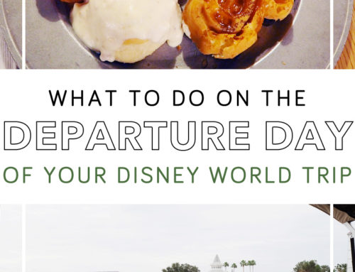 Disney World Departure Day Tips