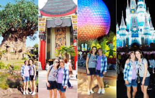 Disney World 4 Parks 1 Day