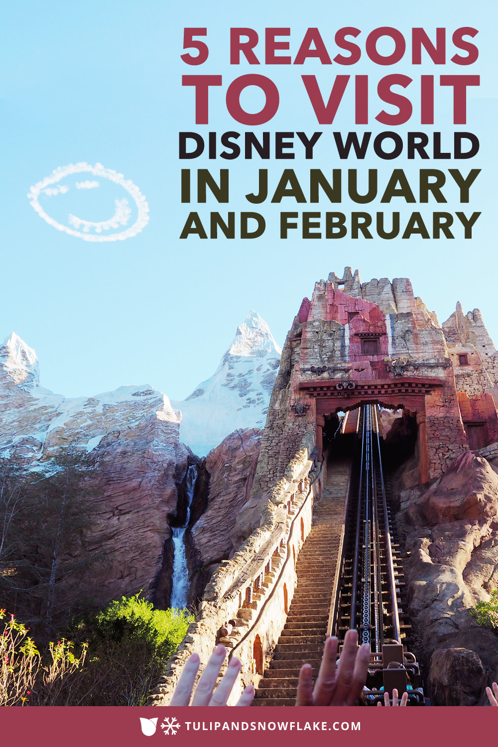 5 Reasons to visit Disney World in January and February