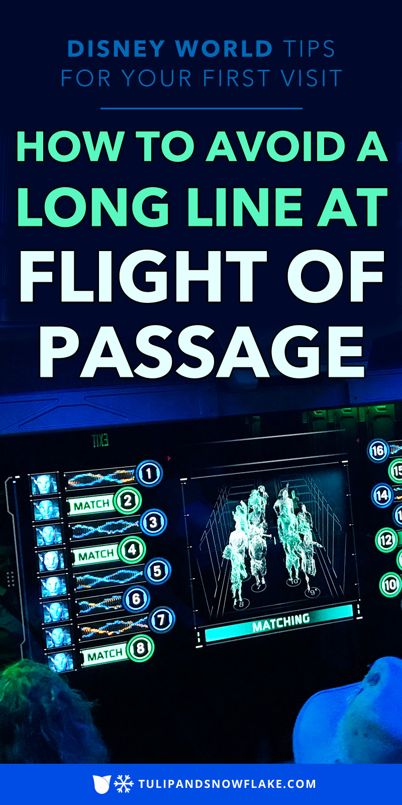 Flight of Passage Rope Drop