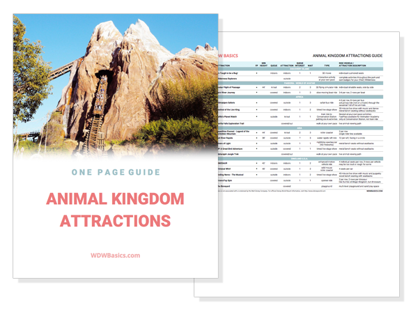 Disney World Animal Kingdom Attractions