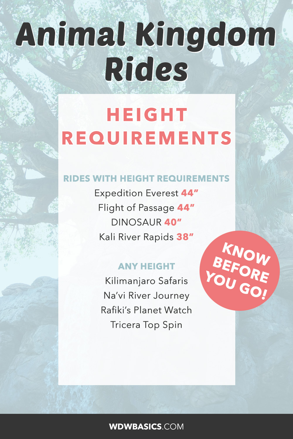 Animal Kingdom Rides height requirements